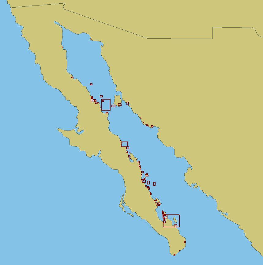 West Mexico BLP